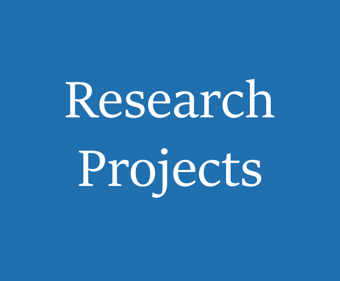 Research projects 3